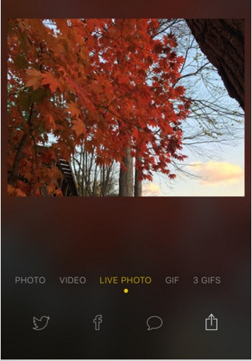 Share live photos on Instagram iPhone app